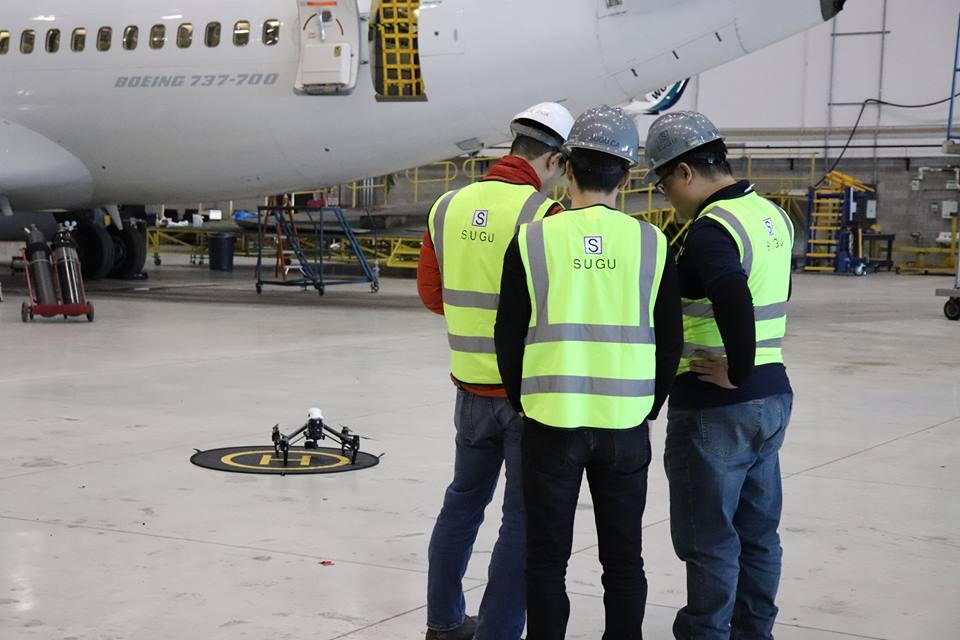 Aircraft Surveys